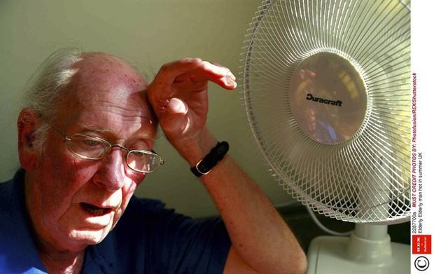 Khi nhiệt độ ngoài trời chạm ngưỡng 50 độ C, cơ thể con người sẽ sụp đổ như thế nào? - Ảnh 6.