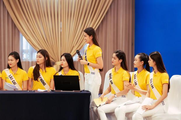 Hoa hậu Hoàn vũ VN: Thúy Vân, Hương Ly tụt hạng, bản sao Tăng Thanh Hà suýt đội sổ - Ảnh 7.