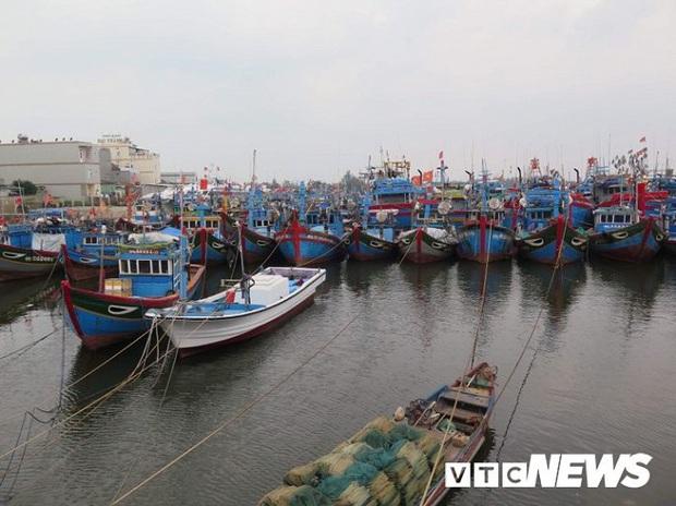 Gần 4.000 ngư dân Quảng Ngãi còn ở ngoài biển khi bão số 6 áp sát đất liền - Ảnh 1.