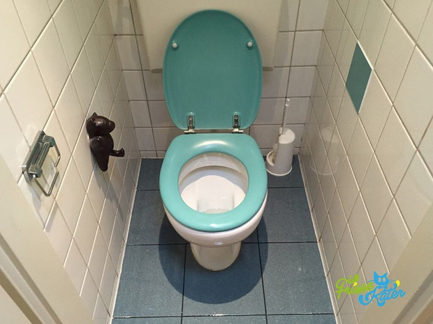 Vào đời với bằng thạc sĩ mà vẫn thất nghiệp, anh chàng đi dọn vệ sinh dạo kiếm 7 tỷ mỗi năm - Ảnh 11.