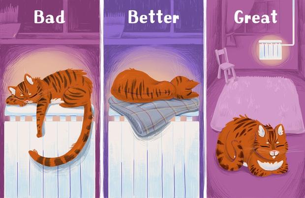 8 sai lầm cực kỳ nghiêm trọng rất nhiều người nuôi thú cưng đang mắc phải mà không hề hay biết - Ảnh 8.
