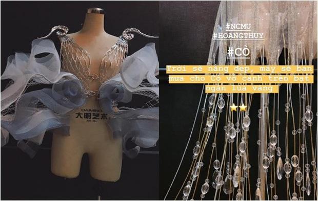 Lộ diện trọn bộ Quốc phục Cò của Hoàng Thùy tại Miss Universe 2019: Liệu có được vỗ cánh thật đẹp trên đất Mỹ? - Ảnh 4.
