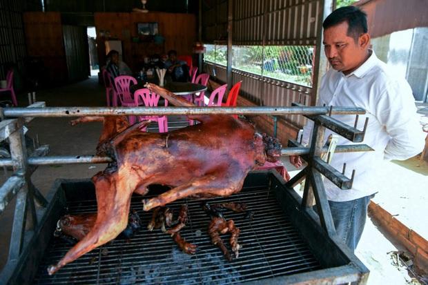 Ngành kinh doanh thịt chó ở Campuchia: Tàn bạo, đầy tội lỗi và những hệ lụy sức khỏe đáng báo động - Ảnh 1.