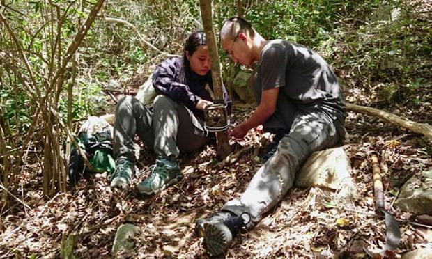 Phát hiện động vật tưởng tuyệt chủng ở Việt Nam sau 30 năm - Ảnh 2.