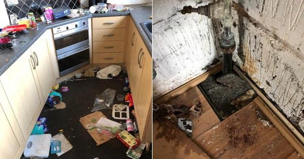 Người thuê bỏ trốn để lại cho ông chủ số tiền nợ lên đến 900 triệu và một căn nhà ngập hoàn toàn trong rác thải, nấm mốc - Ảnh 1.