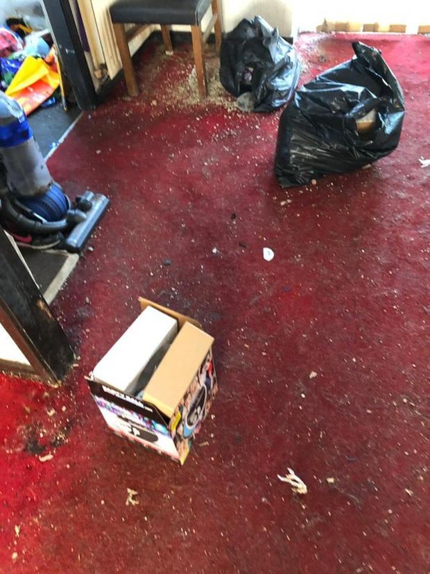 Người thuê bỏ trốn để lại cho ông chủ số tiền nợ lên đến 900 triệu và một căn nhà ngập hoàn toàn trong rác thải, nấm mốc - Ảnh 3.