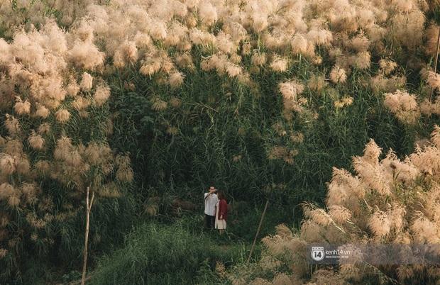 Hà Nội vào mùa cỏ lau đẹp ngút mắt: lên ảnh đẹp thế này thì cần gì sang tận Hàn Quốc chụp cỏ hồng? - Ảnh 5.