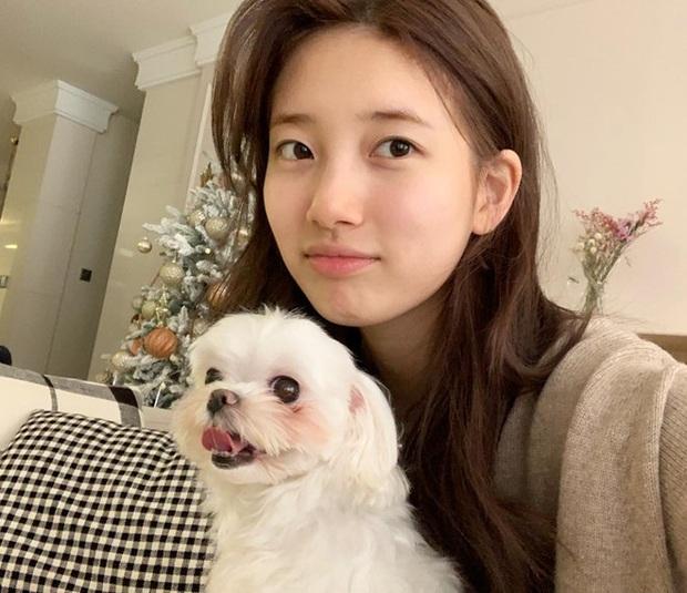 Thánh mặt mộc Suzy lại khuấy đảo MXH: 1 nét ảnh không son phấn mà leo thẳng lên top Naver - Ảnh 4.