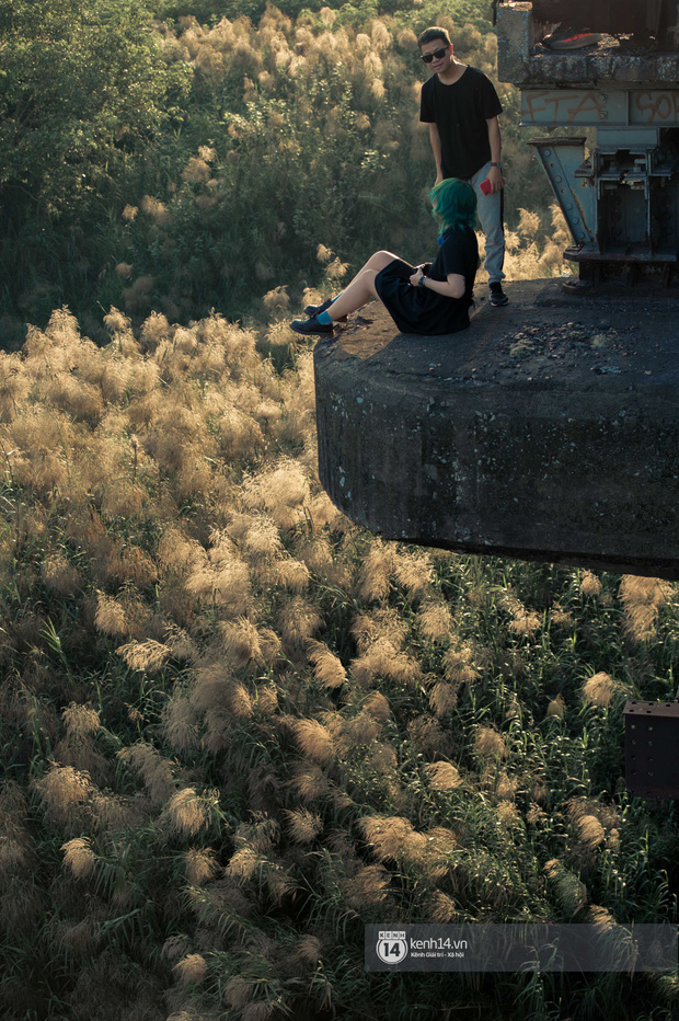 Hà Nội vào mùa cỏ lau đẹp ngút mắt: lên ảnh đẹp thế này thì cần gì sang tận Hàn Quốc chụp cỏ hồng? - Ảnh 4.
