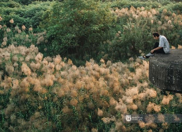 Hà Nội vào mùa cỏ lau đẹp ngút mắt: lên ảnh đẹp thế này thì cần gì sang tận Hàn Quốc chụp cỏ hồng? - Ảnh 9.