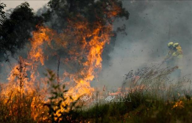 Thêm 50 ngôi nhà bị phá huỷ do cháy rừng ở Australia - Ảnh 1.