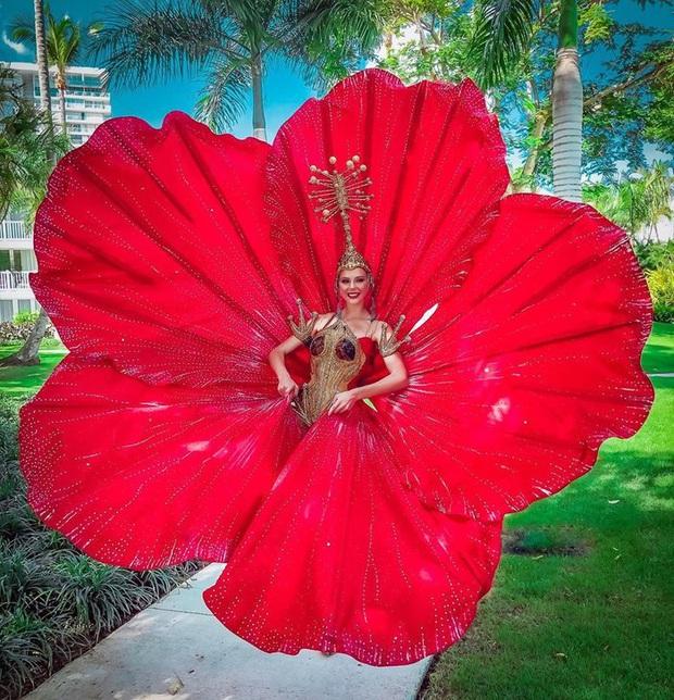Đối thủ của Hoàng Thùy chọn ngay trang phục hoa dâm bụt đỏ thơm tại Miss Universe - Ảnh 6.