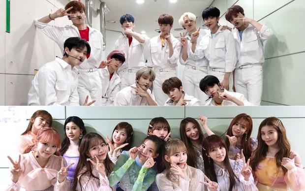 Lùm xùm Produce gian lận: Mnet huỷ sự kiện trong nước của X1 nhưng vẫn phát hành album cho IZ*ONE? - Ảnh 1.