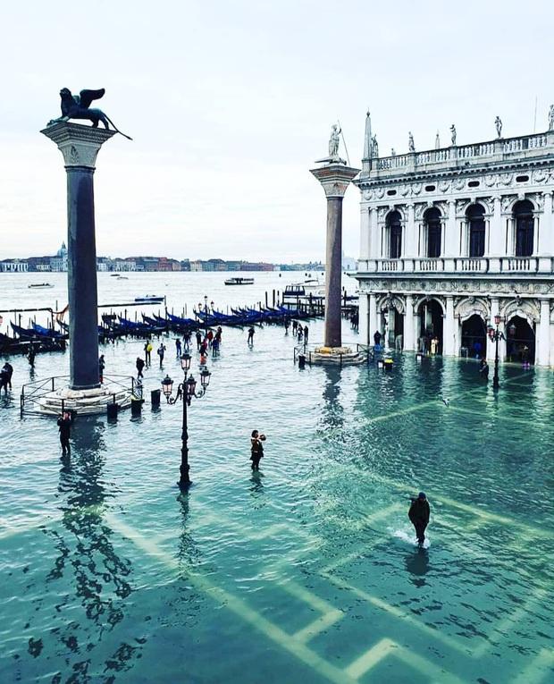 """""""Đen hơn cả anh Vâu"""" chính là khách du lịch ở Venice hiện tại: Mặc cho """"xung quanh toàn là nước"""" vẫn ngậm ngùi lội bì bõm check-in! - Ảnh 8."""