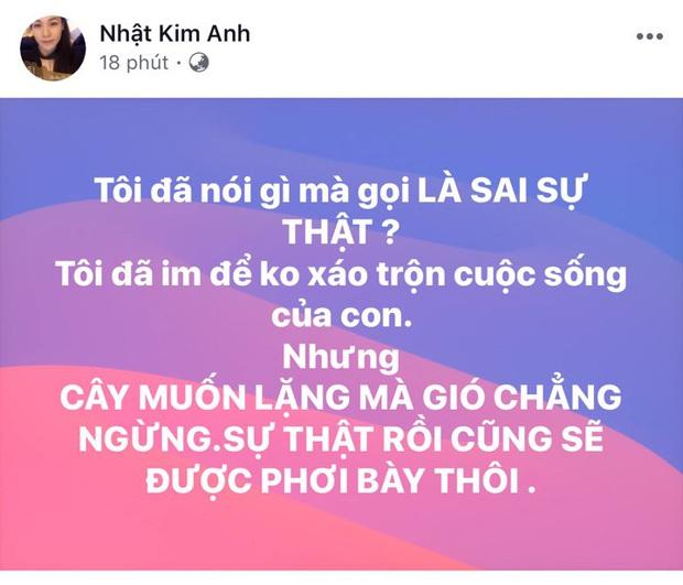 Nhật Kim Anh phản pháo cực gắt vì chồng tố bịa chuyện, chị gái tiết lộ em bị đánh bầm tím lúc mang thai - Ảnh 2.