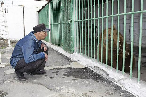 Gấu nâu Katya - nữ tù nhân kì lạ nhất thế giới được ân xá sau khi thụ án 15 năm tù trong một nhà giam toàn tội phạm nguy hiểm - Ảnh 1.