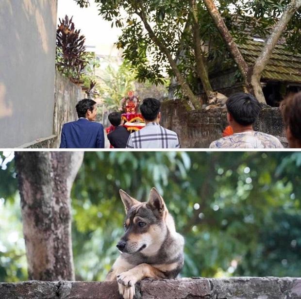 Không phải bà hàng xóm, khoảnh khắc boss vắt vẻo 2 chân lên tường để hóng hớt đám cưới nhà bên mới khiến dân mạng phì cười - Ảnh 1.