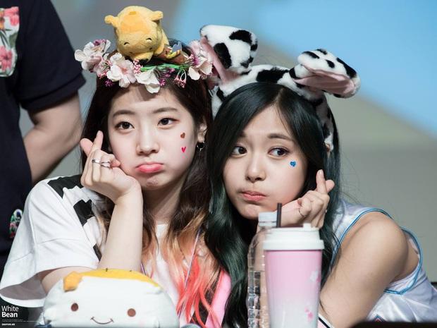 Thêm cặp womance hot hit của Kpop: Dahyun yêu nữ thần Tzuyu (TWICE), ngang nhiên tỏ tình từ lần gặp đầu tiên - Ảnh 1.