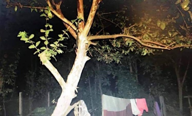 Cô gái 23 tuổi tử vong trong tư thế treo cổ trên cây ổi - Ảnh 1.