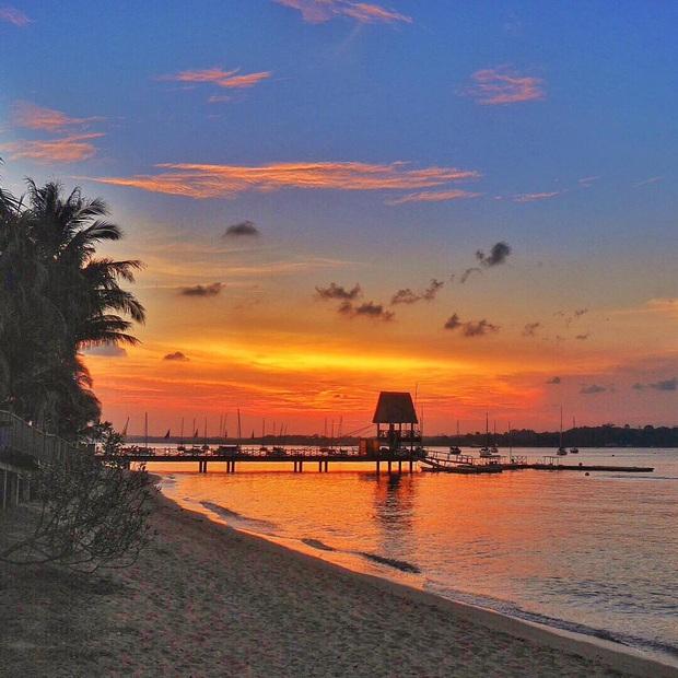 Nếu có đi trăng mật ở Singapore thì đây chính là những địa điểm cực lãng mạn Đông Nhi và Ông Cao Thắng nên ghé thăm - Ảnh 17.