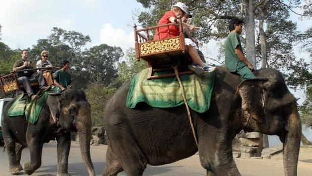 Hình ảnh cưỡi voi ở Angkor Wat sẽ đi vào dĩ vãng - Ảnh 1.