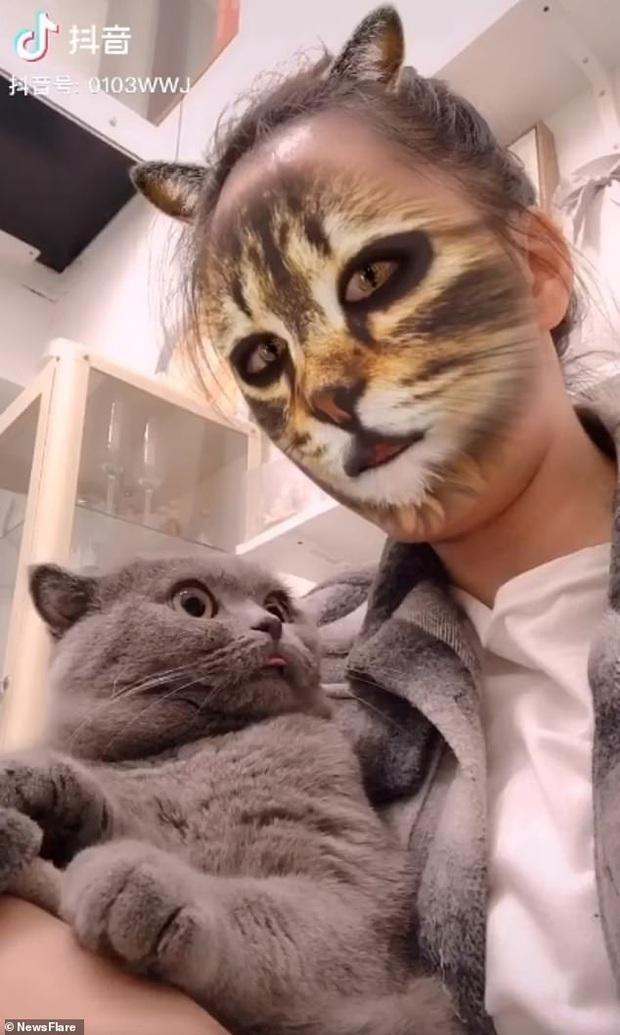 Bị sen troll bằng cách dùng filter mặt mèo trên camera, phản ứng hoảng hốt của các boss khiến dân mạng không nhịn được cười - Ảnh 2.