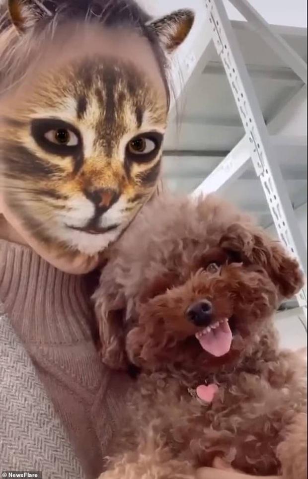 Bị sen troll bằng cách dùng filter mặt mèo trên camera, phản ứng hoảng hốt của các boss khiến dân mạng không nhịn được cười - Ảnh 3.