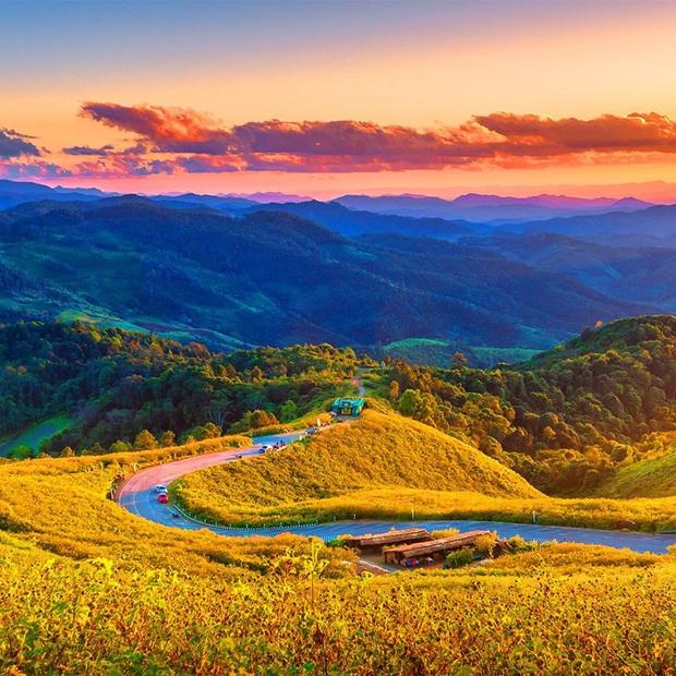 Đồi hoa dã quỳ vàng rực chẳng biết là mơ hay thật đang gây sốt toàn Thái Lan, xem ảnh ngoài đời chỉ biết ngỡ ngàng vì đẹp! - Ảnh 2.