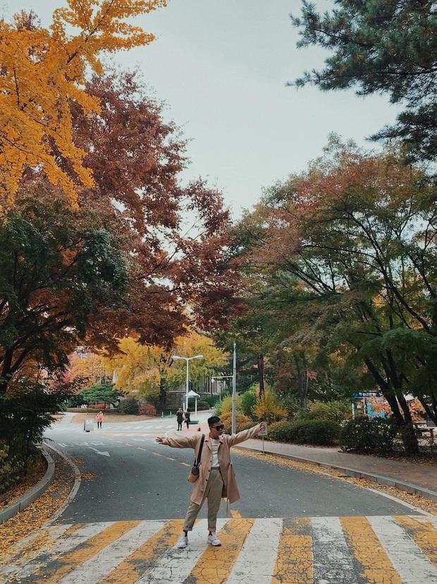 Công ty người ta không bao giờ làm tôi thất vọng: Du lịch Hàn Quốc theo concept, mỗi ngày đều chụp ảnh như thi Next Top Model - Ảnh 16.