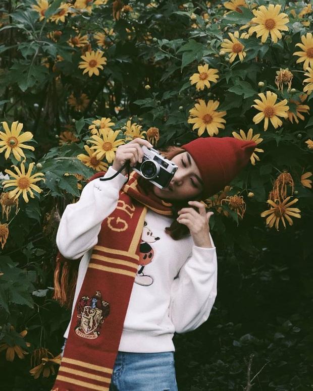 Đồi hoa dã quỳ vàng rực chẳng biết là mơ hay thật đang gây sốt toàn Thái Lan, xem ảnh ngoài đời chỉ biết ngỡ ngàng vì đẹp! - Ảnh 15.