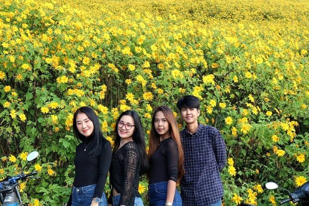 Đồi hoa dã quỳ vàng rực chẳng biết là mơ hay thật đang gây sốt toàn Thái Lan, xem ảnh ngoài đời chỉ biết ngỡ ngàng vì đẹp! - Ảnh 21.