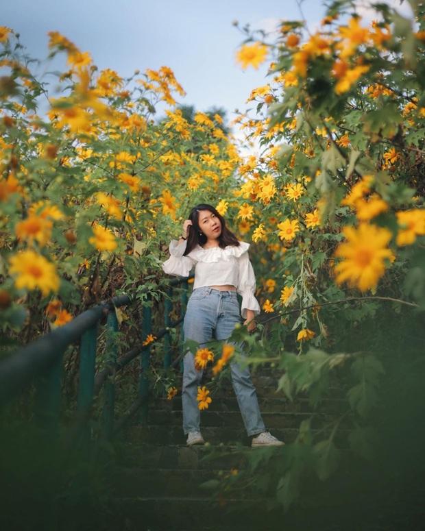 Đồi hoa dã quỳ vàng rực chẳng biết là mơ hay thật đang gây sốt toàn Thái Lan, xem ảnh ngoài đời chỉ biết ngỡ ngàng vì đẹp! - Ảnh 23.