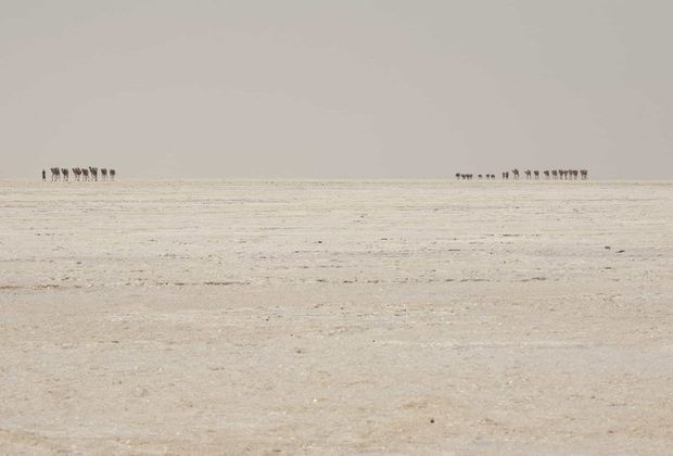 Chùm ảnh: Cuộc sống ở nơi nóng nhất hành tinh - Ảnh 13.