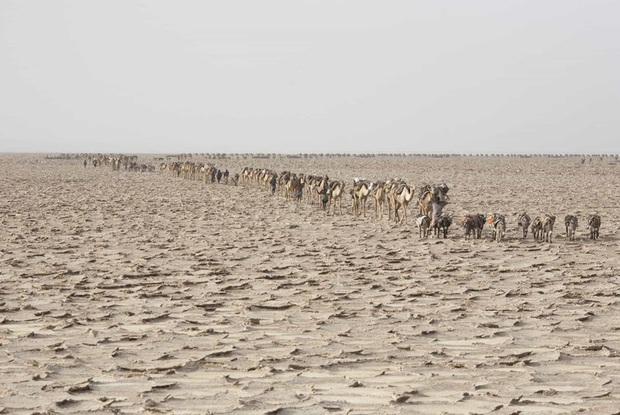 Chùm ảnh: Cuộc sống ở nơi nóng nhất hành tinh - Ảnh 9.