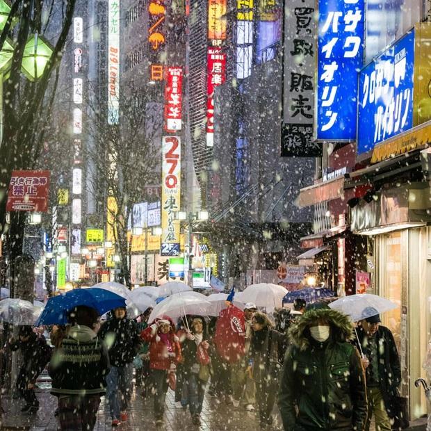 """Bộ ảnh phố Nhật về đêm đầy """"ảo diệu"""" đang gây sốt cộng đồng mạng, hóa ra mùa đông xứ hoa anh đào đẹp đến thế sao? - Ảnh 2."""
