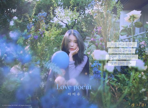 Lời đề tựa ca khúc Love Poem của IU trên MelOn: Tâm tư như dành trọn cho Sulli khiến người hâm mộ không khỏi xúc động - Ảnh 2.