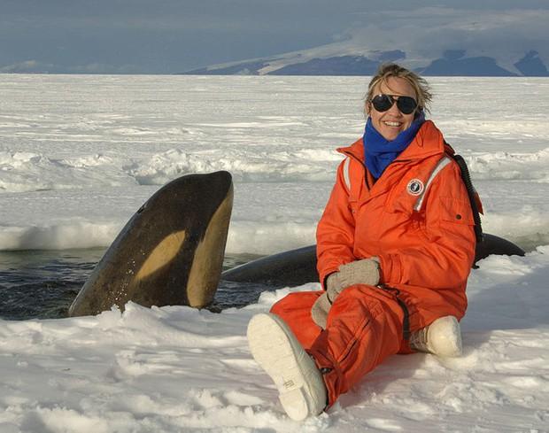 Nam Cực đang trở thành điểm du lịch hút khách mới trong tương lai, nghe thì vui nhưng đó lại là 1 dấu hiệu đáng buồn cho Trái Đất - Ảnh 16.
