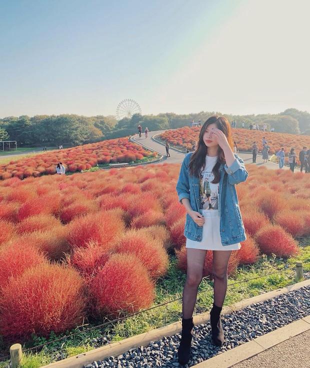 Đẹp nhất Nhật Bản mùa này chính là đồi cỏ Kochia đỏ rực, du khách đua nhau check-in đông không thấy lối đi - Ảnh 17.