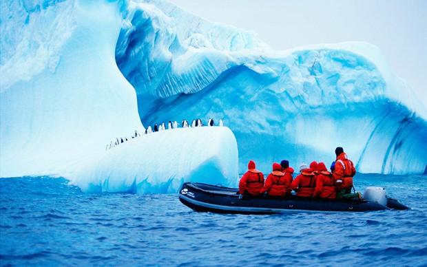 Nam Cực đang trở thành điểm du lịch hút khách mới trong tương lai, nghe thì vui nhưng đó lại là 1 dấu hiệu đáng buồn cho Trái Đất - Ảnh 22.