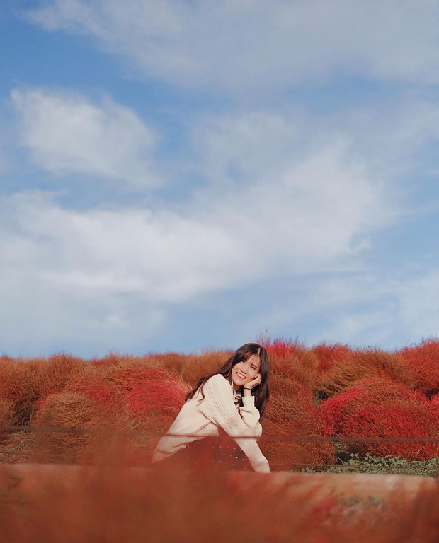 Đẹp nhất Nhật Bản mùa này chính là đồi cỏ Kochia đỏ rực, du khách đua nhau check-in đông không thấy lối đi - Ảnh 16.