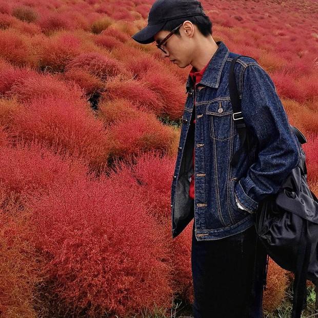 Đẹp nhất Nhật Bản mùa này chính là đồi cỏ Kochia đỏ rực, du khách đua nhau check-in đông không thấy lối đi - Ảnh 4.