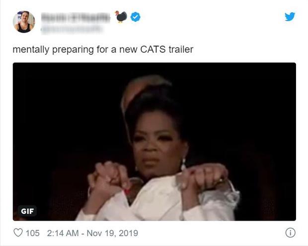 Hết hồn nhìn bầy mèo cởi truồng ở trailer Cats, cư dân mạng ái ngại đua nhau che chắn vòng 1 cho Taylor Swift - Ảnh 10.