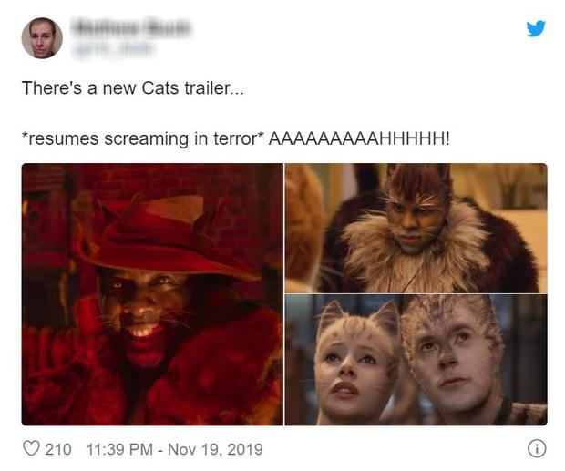 Hết hồn nhìn bầy mèo cởi truồng ở trailer Cats, cư dân mạng ái ngại đua nhau che chắn vòng 1 cho Taylor Swift - Ảnh 12.