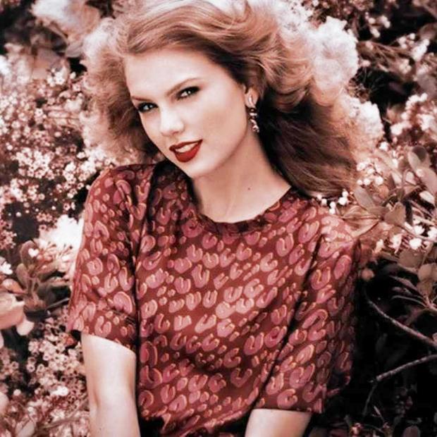 11 năm trước, chính nhan sắc cực phẩm tựa công chúa này của Taylor Swift đã khiến hàng triệu người lạc vào mê hồn trận - Ảnh 3.
