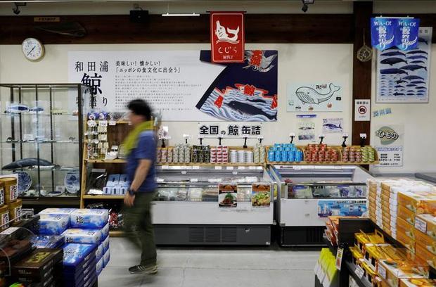 Đăng video ăn thịt cá voi xanh mua ở Nhật khiến dân mạng tranh cãi nảy lửa, Quỳnh Trần JP lên tiếng đáp trả cực gắt - Ảnh 17.