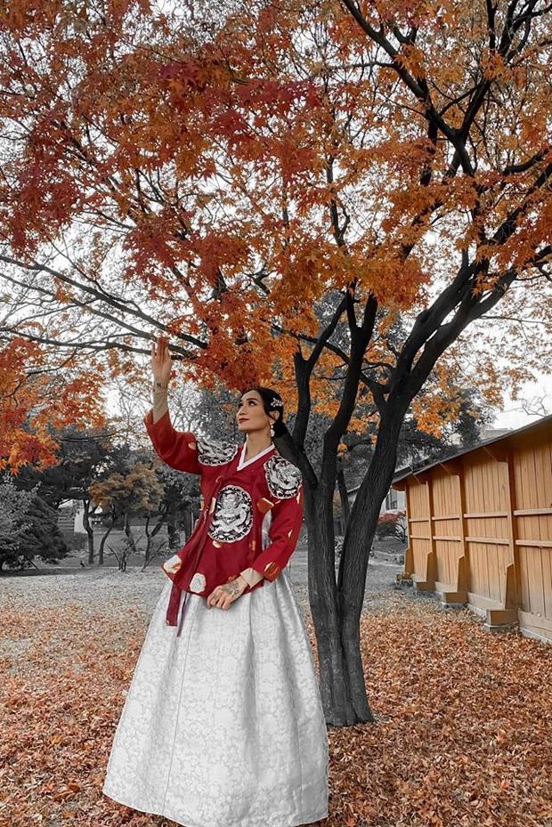 Giả gái xuất sắc đã đành, BB Trần bắt trend du lịch còn đỉnh hơn: Đến Hàn Quốc thời điểm hot nhất năm, chụp bừa cũng có 7749 ảnh đẹp - Ảnh 12.