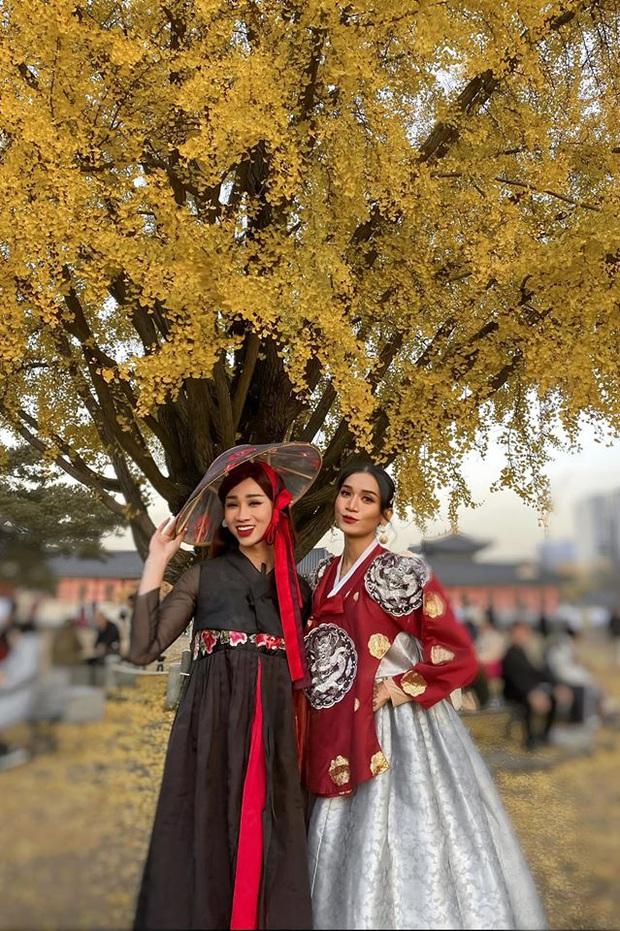 Giả gái xuất sắc đã đành, BB Trần bắt trend du lịch còn đỉnh hơn: Đến Hàn Quốc thời điểm hot nhất năm, chụp bừa cũng có 7749 ảnh đẹp - Ảnh 4.