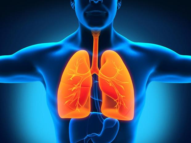 Sử dụng chăn đệm từ lông vũ chưa được làm sạch, người đàn ông mắc bệnh viêm phổi nặng, khó thở suốt hơn 3 tháng - Ảnh 3.