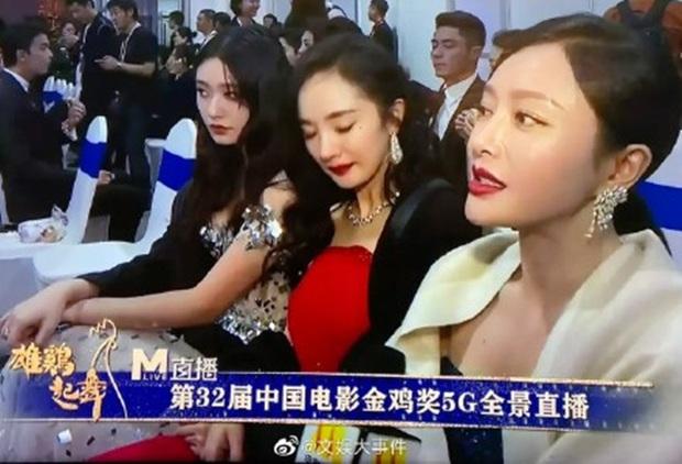 Dương Mịch - Tần Lam ngượng ngùng, bối rối đến mức trợn mắt khi MC lỡ miệng phỏng vấn câu hỏi tế nhị - Ảnh 3.