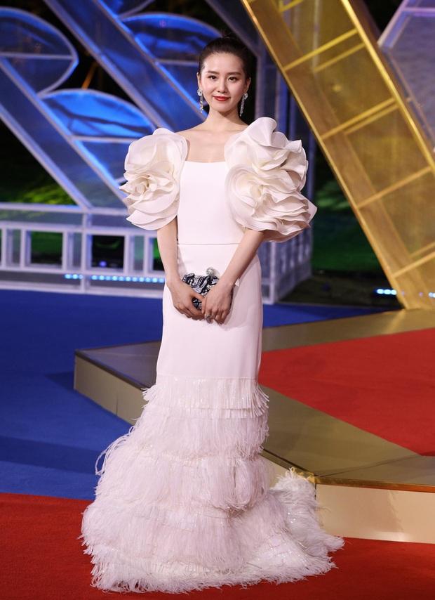 Sự kiện khủng Cbiz hôm nay: Địch Lệ Nhiệt Ba xinh như công chúa, Dương Mịch - Lưu Thi Thi chặt chém thảm đỏ ác liệt - Ảnh 8.